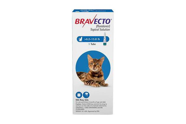 Bravecto Topical Solution for Cats (6.2 to 13.8 pounds)